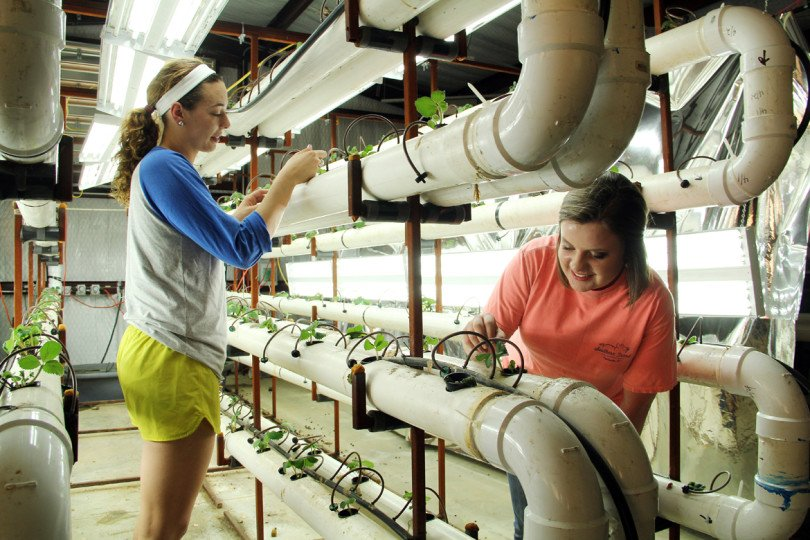 SAU Receives $280K to Promote Agriculture Careers - Arkansas Money ...